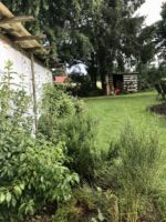 Oldenborstel