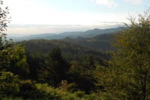 Montfort Sur Boulzane