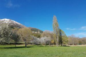 Puy-Saint-Eusèbe